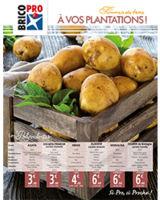 À vos plantations, spécial pommes de terre 2018